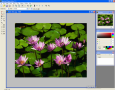 Altarsoft Photo Editor 3