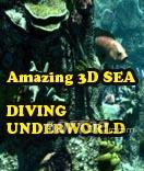 Amazing 3D Sea - Diving Underworld Screenshot 2
