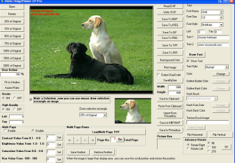 VISCOM TIFF Viewer ActiveX SDK Screenshot