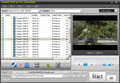 Ainsoft DVD to FLV Converter 1