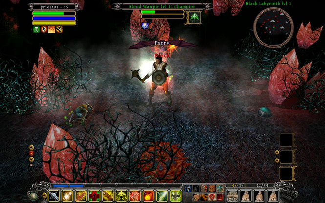 Din's Curse Screenshot 1