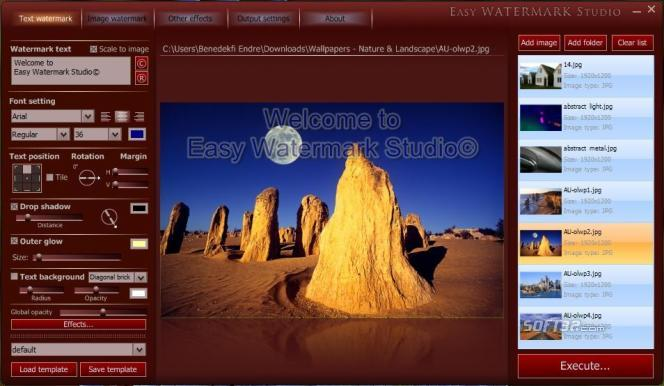 Easy Watermark Studio Screenshot 2