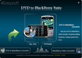 4Easysoft DVD to BlackBerry Suite 1