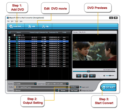 iSkysoft DVD to iPad Converter Screenshot 1