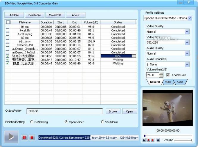 DDVideo Google Video Converter Gain Screenshot 2