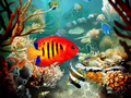 Tropical Fish 3D Screensaver 1