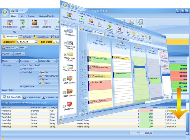 OrgFinances for Workgroup Screenshot