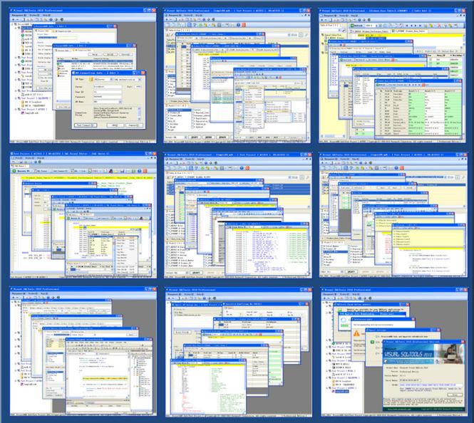 Visual SQLTools 2010 Professional Screenshot