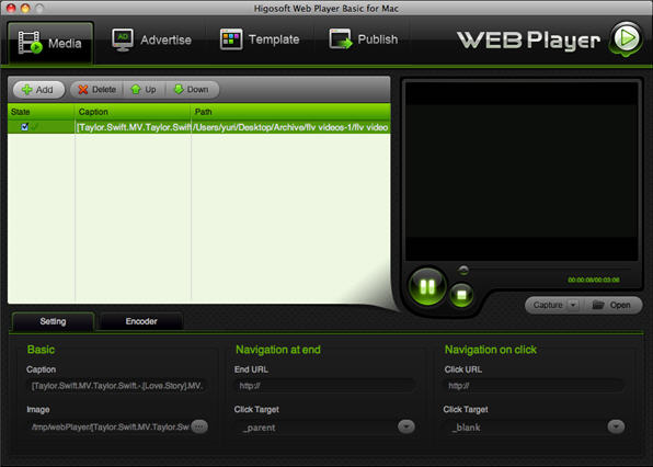 Higosoft Web Player Basic Screenshot