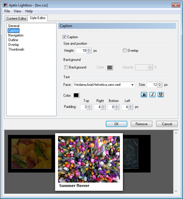 Lightbox Expression Web Add-In Screenshot 1