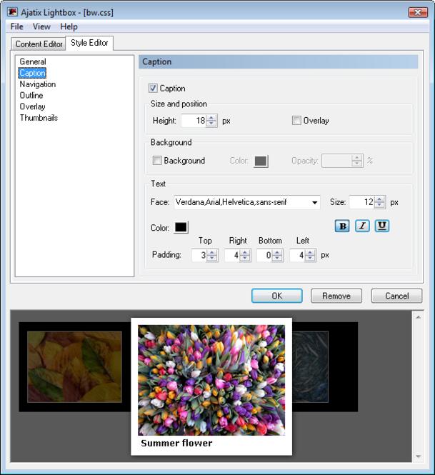 Lightbox Expression Web Add-In Screenshot