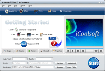 iCoolsoft DVD to FLV Converter Screenshot