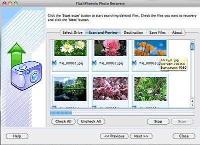 FlashPhoenix Photo Recovery for Mac Screenshot 2