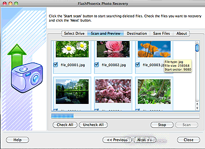 FlashPhoenix Photo Recovery for Mac Screenshot 3