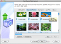 FlashPhoenix Photo Recovery for Mac 3