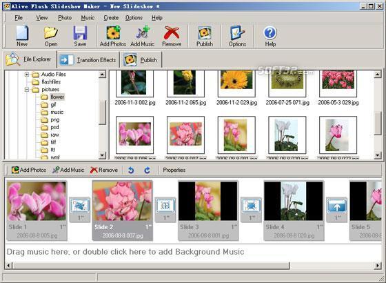 Alive Flash Slideshow Maker Screenshot 3