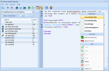 BatchSpellChecker Screenshot
