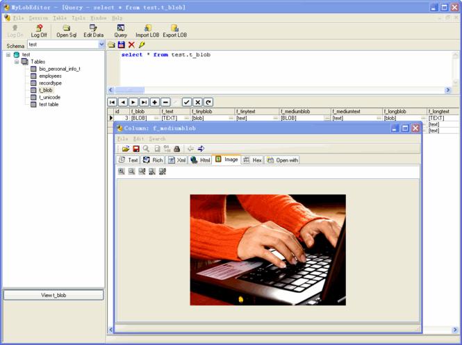 MyLobEditor Screenshot