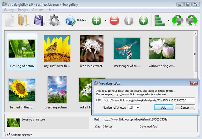 DHTML Popup Screenshot