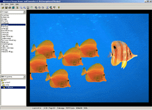 Advanced Image Viewer and Converter Screenshot