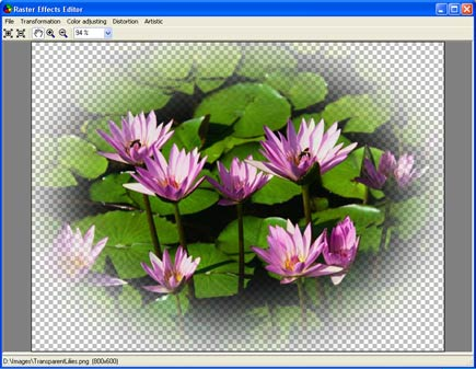 Aurigma Graphics Processor Screenshot