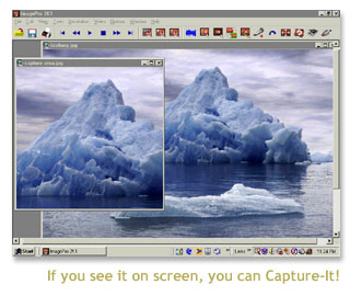 Capture-It! Screenshot 1