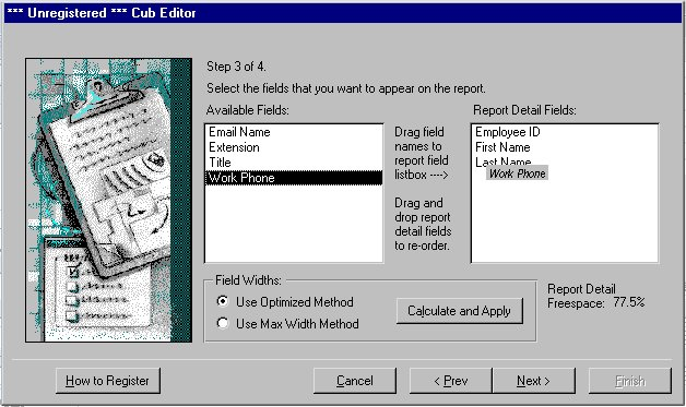 Cub Editor for MS Access 97 Screenshot