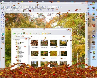 Leaves Screensaver Screenshot