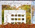Leaves Screensaver 1
