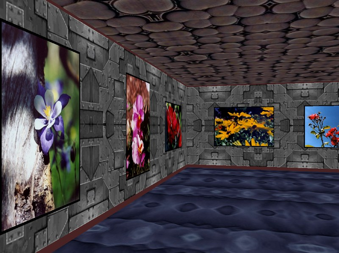 Phota Flowers Screensaver Screenshot