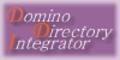 C. Domino Directory Integrator 10-? licenses 1