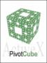 PivotCubeX - ActiveX control for OLAP analysis 1