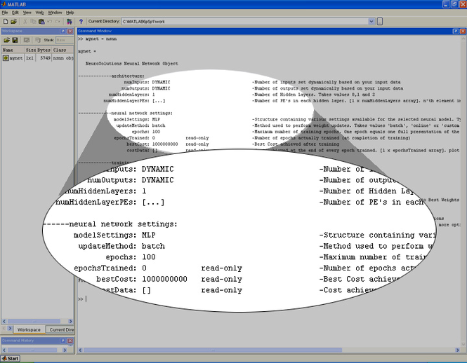 NeuroSolutions for MATLAB Screenshot