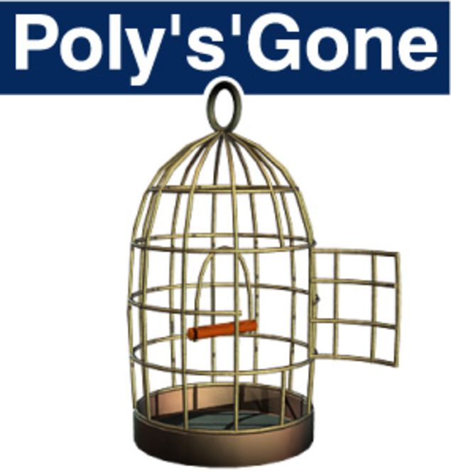 Poly's'Gone Screenshot