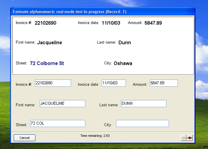 Data Entry Test 2004 Screenshot