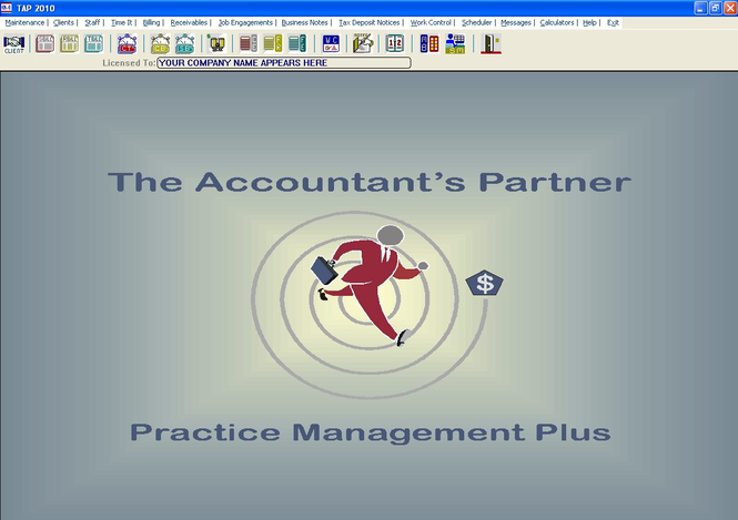The Accountants Partner Screenshot