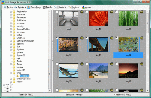 NineOn Inc. Bulk Image Processor Screenshot
