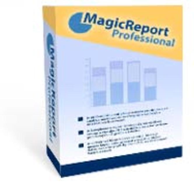 MagicReport Professional Screenshot 1
