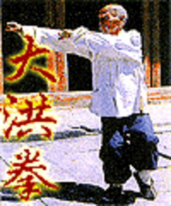 Tang Ji Ren. TANG SHI QUAN SHU: PUGILISTIC ART OF THE TANG FAMILY Screenshot