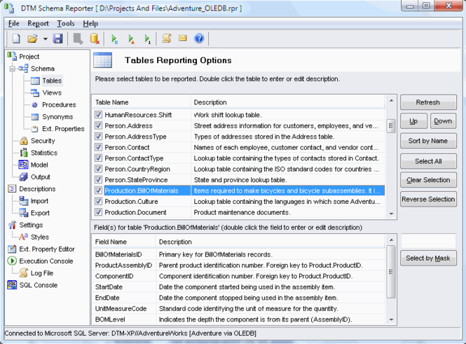 DTM Schema Reporter Screenshot