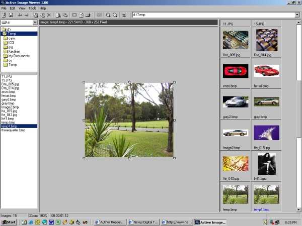 Active Image Viewer Screenshot 3