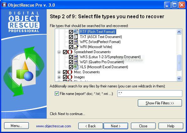 Digital ObjectRescue Professional Screenshot 2