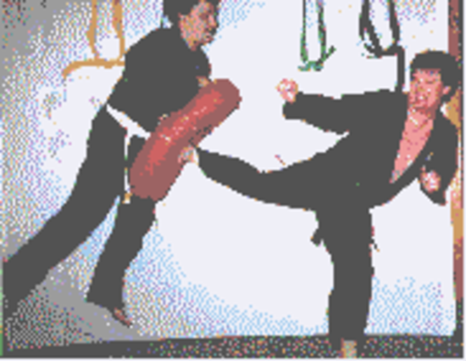 Affiliate Package for Solo Martial Arts Screenshot