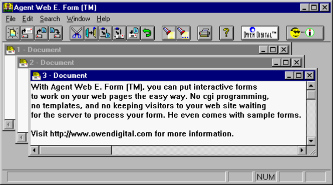 Agent Web E. Form (TM) Screenshot