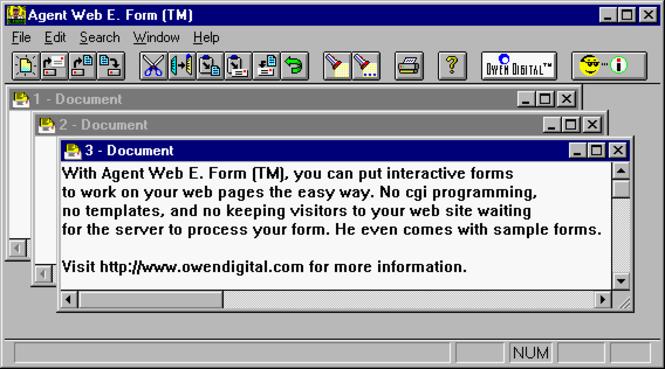 Agent Web E. Form (TM) Screenshot 1