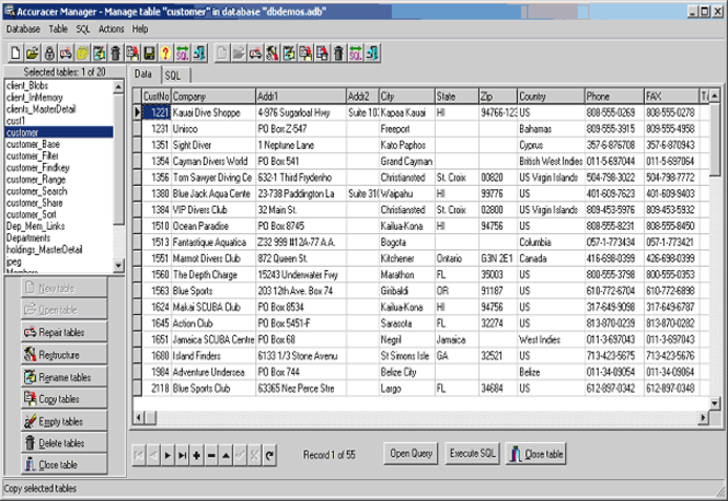 Accuracer Database System Screenshot 1