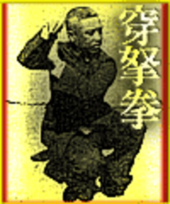 Xu Yi Qian. CHUAN NA QUAN. Style of Piercing Blows and Holds. Screenshot