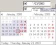 XE-Date Control (developer license) 1