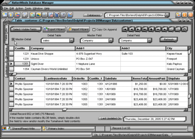 NativeWinds Database Manager Screenshot