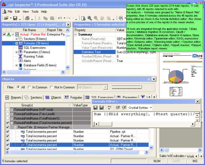 .rpt Inspector Professional Suite for Crystal Reports 8.5 Screenshot